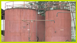 Neem Oil Storage Tanks